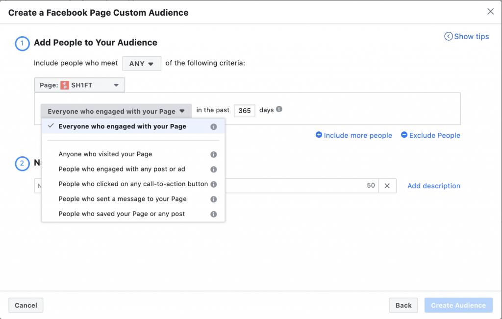 Facebook Page custom audience