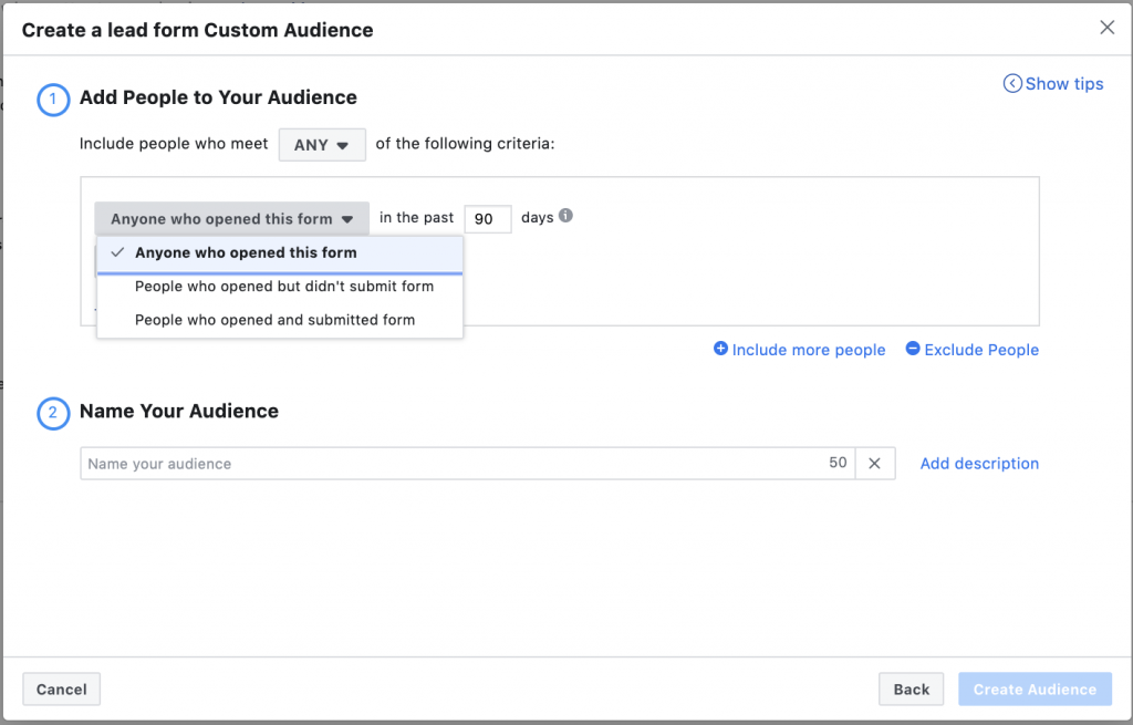 Lead Form Facebook Audience