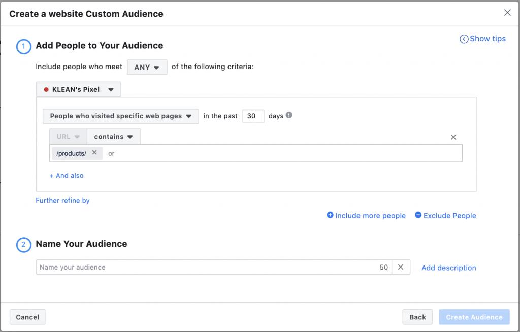Website custom audience Facebook ads