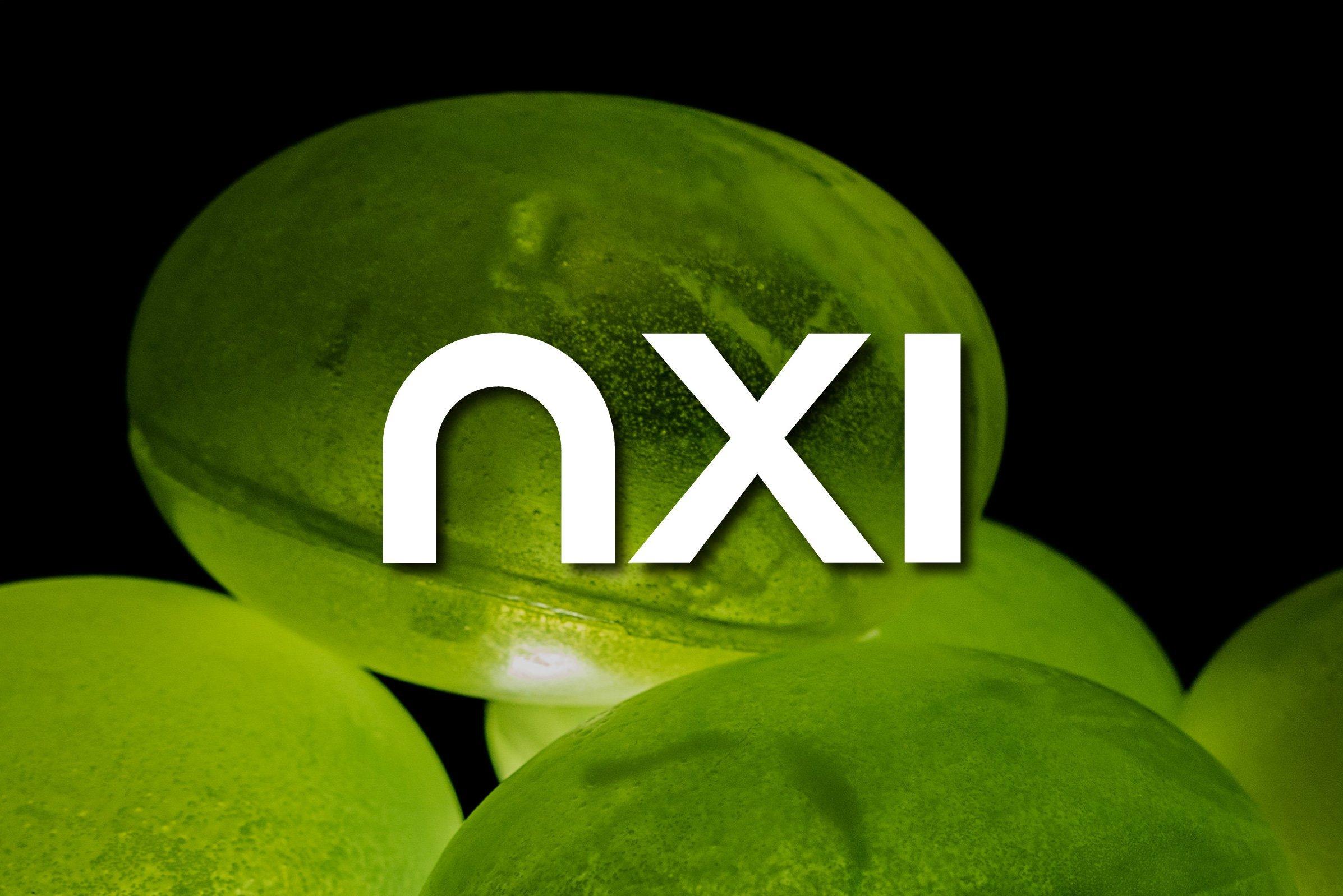 nxi-portoflio-1