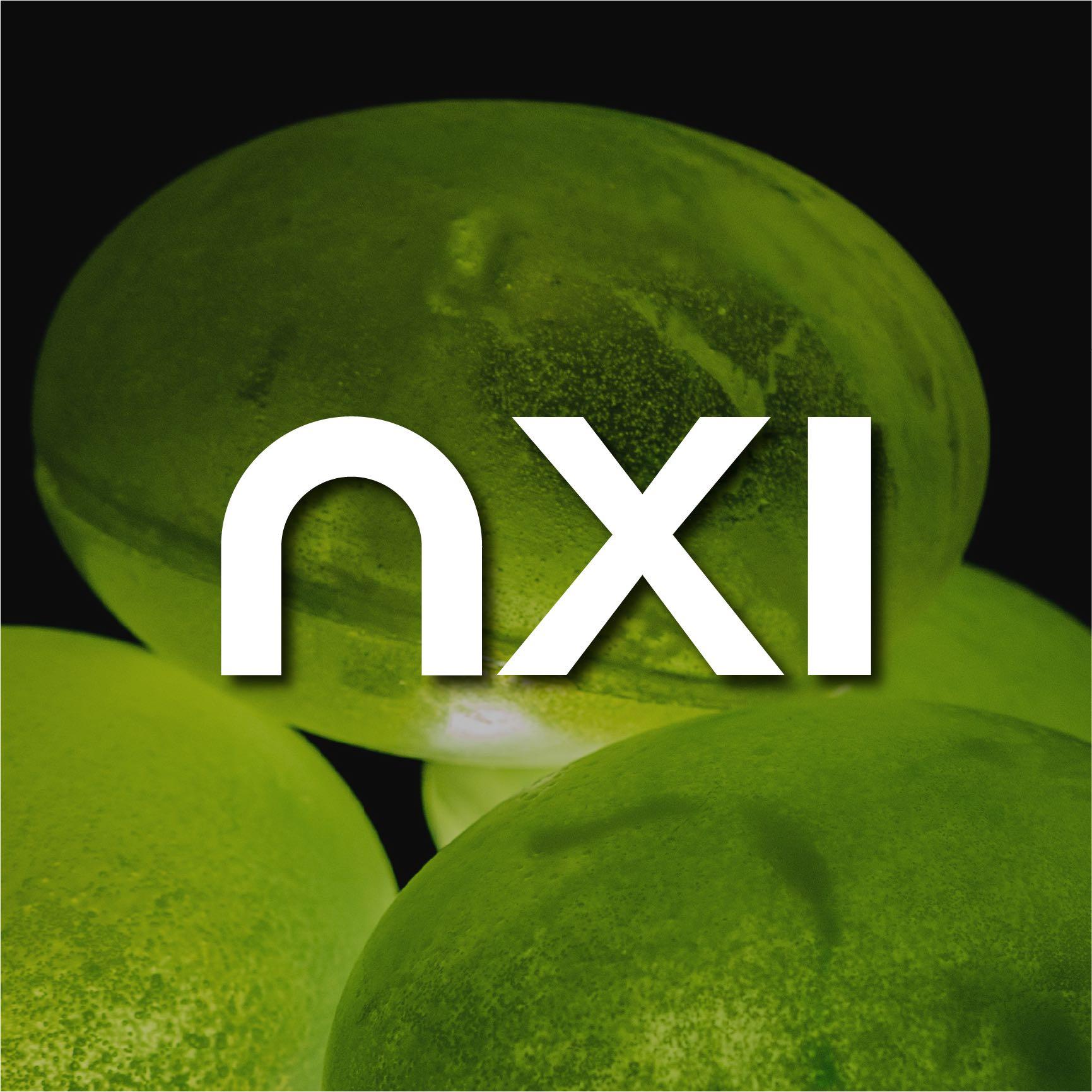 nxi-testimonial